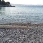 prodnata plaža
